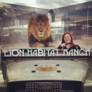 Get Your Picture with the Lions!
