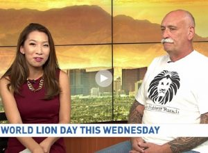 Keith Evans Talking World Lion Day